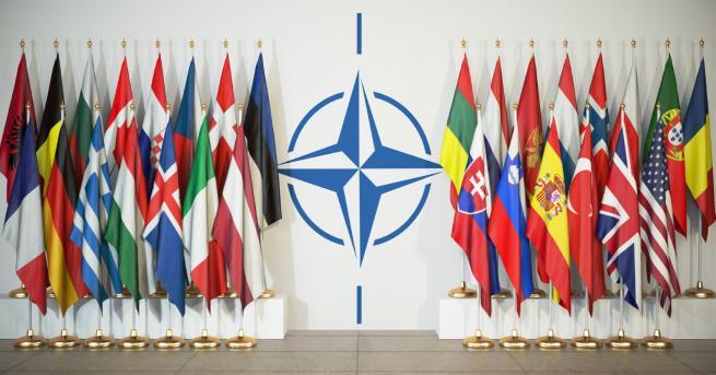 """Свят НАТО – в """"мозъчна смърт"""" на 70 години? Очаква"""