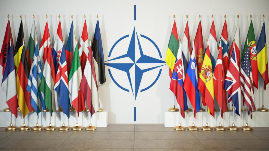 <p>НАТО &ndash; в &bdquo;мозъчна смърт&rdquo; на 70 години?</p>