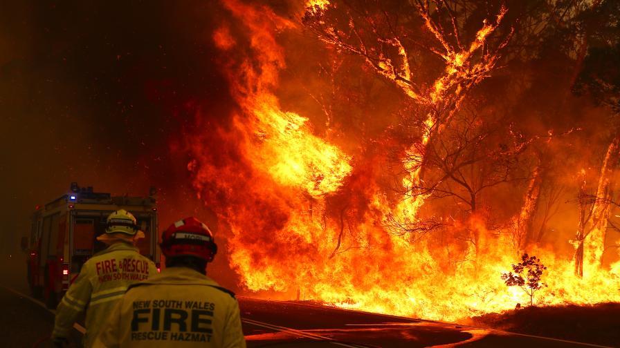 Пожарите в Австралия не стихват, извънредно положение в Канбера