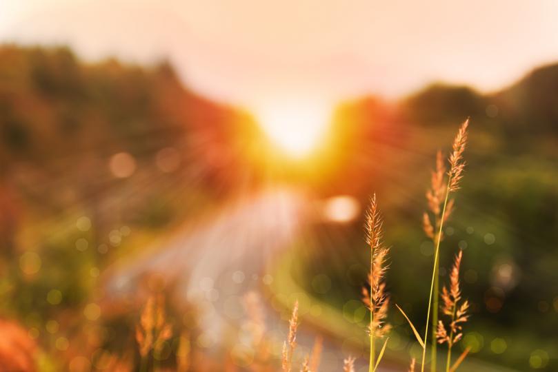 <p>Земята е нашата майка. Пазете я, почитайте я. Земята ни храни и търпи, но понякога се надига и наказва. Тя може много тежко да наказва&hellip;</p>
