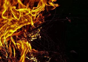 Голям пожар изпепели 10 хектара гора във Франция