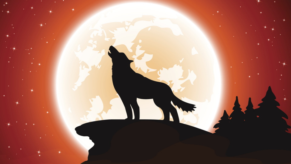 луна вълк