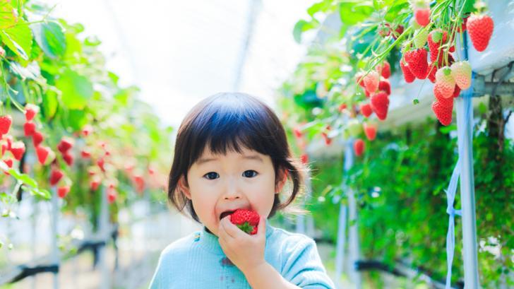 Защо българските деца са по-болнави от япончетата?