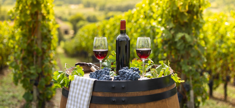 <p><strong>Вино</strong></p>  <p>Сортовете грозде са много податливи на условията на околната среда&nbsp;като дори и най-малката промяна може да доведе до разлика във вкуса, което не е нужно да сте сомелиер, за да забележите. Според експерти и проучване от 2013 г., плодородната и подходяща почва за отглеждане на винени сортове грозде може да намалее със 73% до 2050 г.&nbsp;</p>