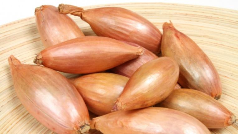 шалот лук чесън полезни свойства френска кухня