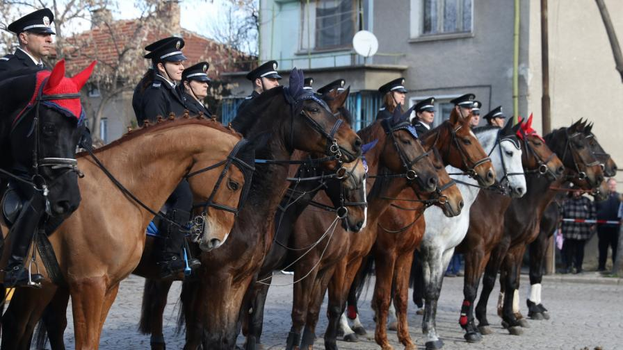 кон сдвр конна полиция коне тодоровден тодоров ден кушия кушии
