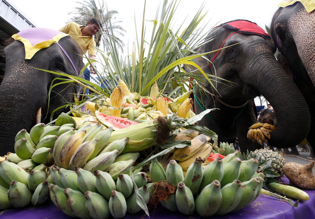 <p>Деня на слона в град Патая, провинция Чонбури, Тайланд.</p>