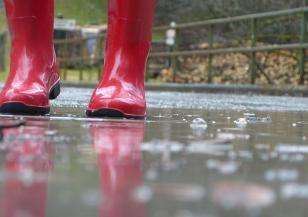 Дъжд обхваща цялата страна в събота