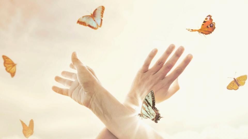 ръце пеперуди