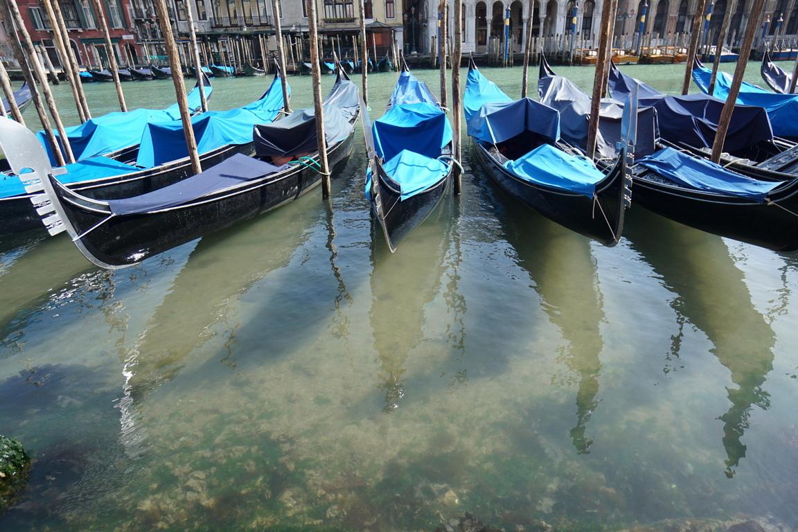 <p>След заминаването на туристите и ограниченията, които Италия преживява от десет дни, водите на Венеция отново са бистри.</p>