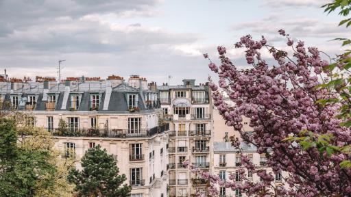 <p><strong>Българката</strong>, която огласи парижките балкони</p>