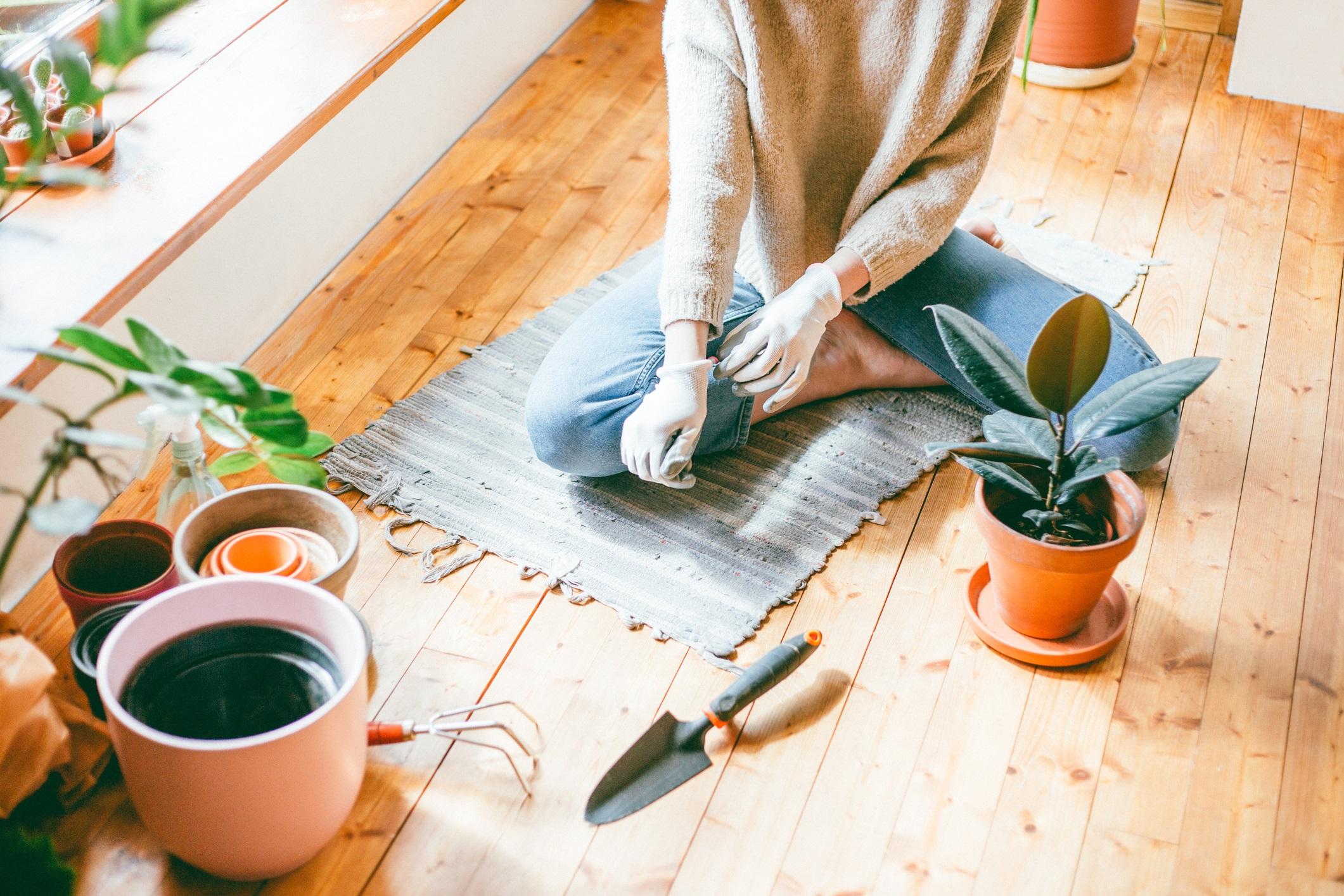 <p><strong>Губите всякакъв контакт с природата</strong></p>  <p>Да изолирани сме вкъщи, но това не означава, че не трябва да имаме досег с природата. Защо не я внесете вкъщи? Ако в домът ви все още няма саксии с цветя &ndash; време е. Стайните растения са полезни за чистотата на въздуха.</p>