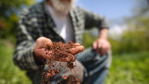 <p>Защо <b>почвата</b>&nbsp;на Земята е <strong>кафява?</strong></p>