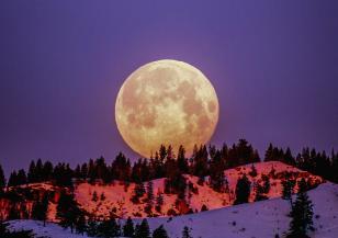 На 8 април ще видим розова Луна