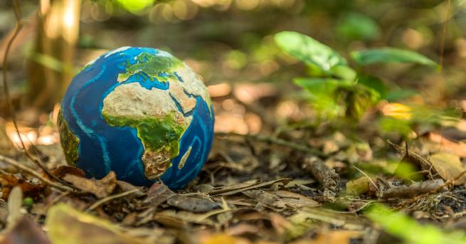 Любопитно Отбелязваме Международния ден на Земята под мотото