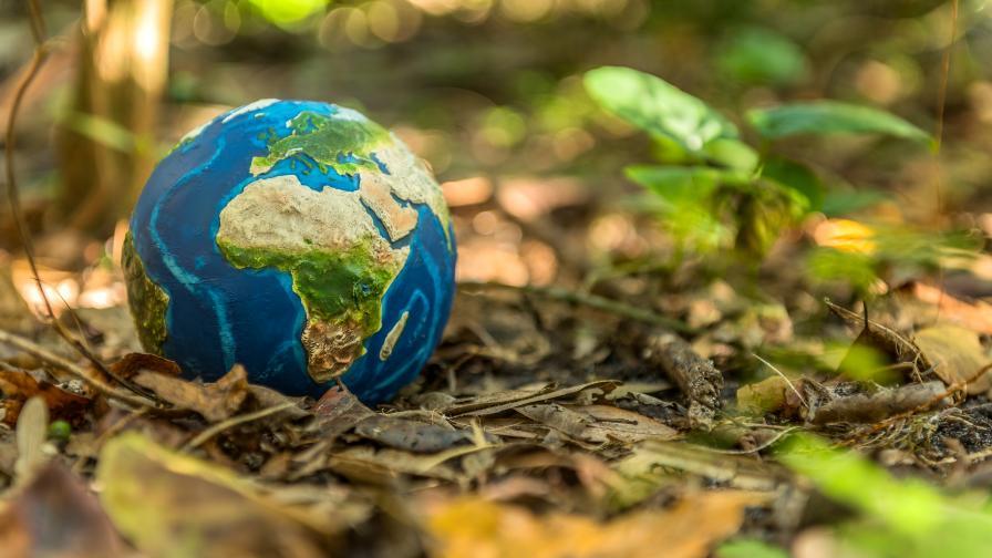<p>Отбелязваме Международния ден на Земята</p>