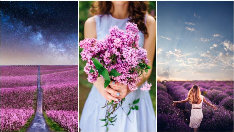 пролет жена лято
