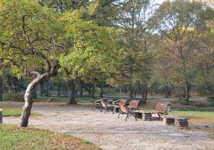 В София пръскат срещу кърлежи
