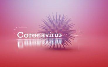 Отмениха европейско първенство заради коронавируса