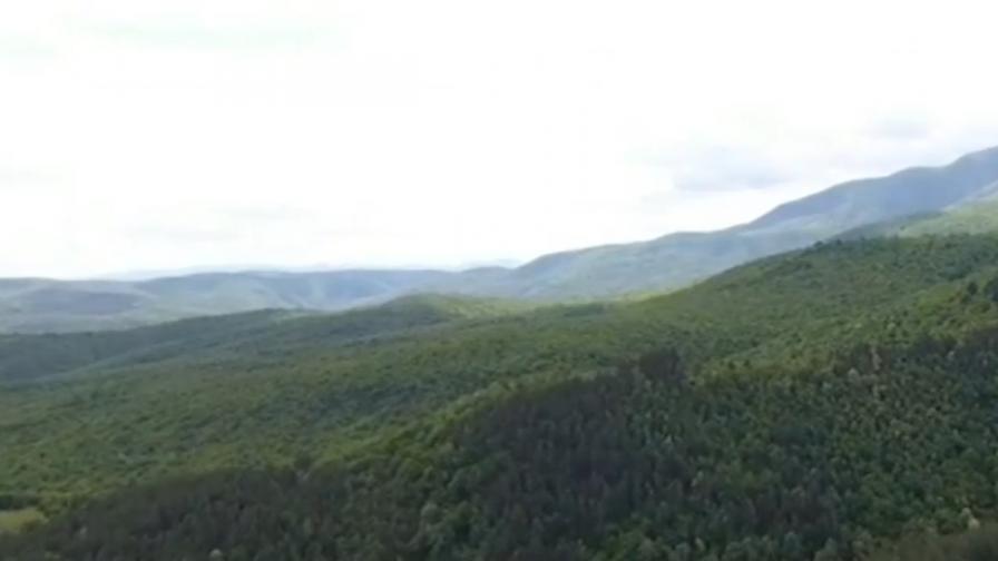 Пазарджик получи дарението, което спаси гората на Црънча