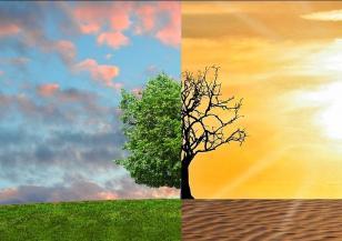 Изминалият май е най-топлият, регистриран някога