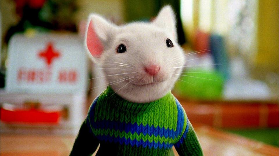 <p><strong>Стюарт Литъл</strong> -&nbsp;Той е умен, ентусиаст, уверен в силите си. Той е мишка. Дребен симпатяга с голямо сърце, Стюарт търси своето място в един свят с определено гигантски размери. Осиновяването му от човешкото семейство Литъл става причина за лудешките му патила, най-вече със семейната котка Сноубел. Така, неусетно, Стюарт осъзнава смисъла на непознати дотогава за него думи като семейство, лоялност и приятелство.</p>  <p>&bdquo;Стюарт Литъл&ldquo;: 6 юни, събота, 14.30 ч. по NOVA</p>