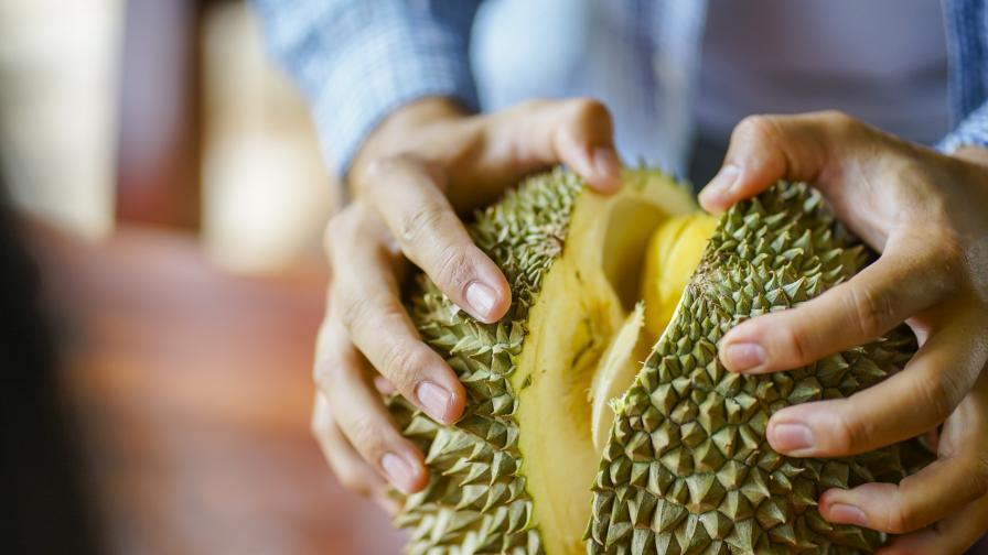 Миризливият плод, забранен за хапване на обществени места