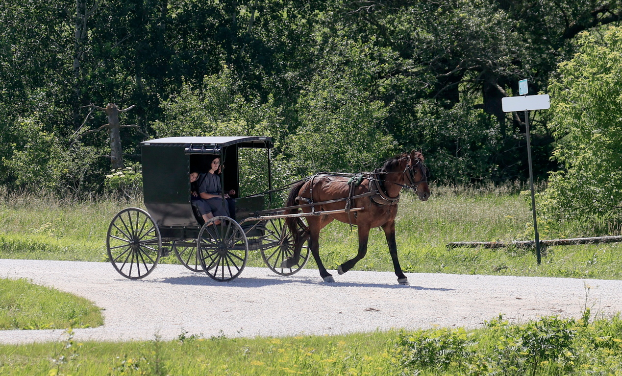 <p><br /> Окръг Ланкастър в Пенсилвания и районът на град Берлин и окръг Холмс в Охайо са няколко известни места с голяма концентрация на амиши. Колония от 2200 амиши има и в град Артур, Илинойс. Извън САЩ малки общности от амиши има в Канада, Боливия и Аржентина.</p>