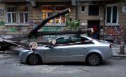 Дърво премаза кола в центъра на София