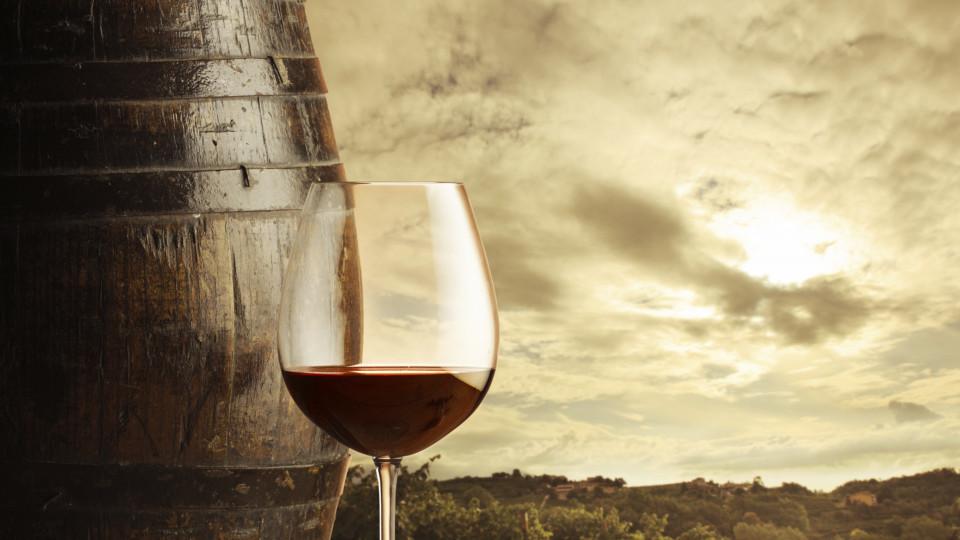 Приключенията по пътя на виното
