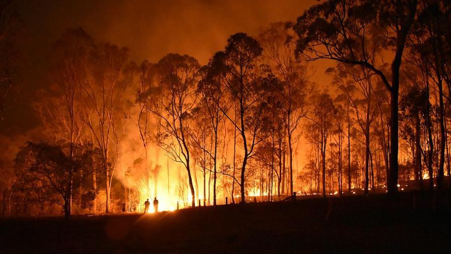 Пожар избухна в Хасковско