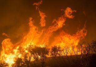 Над 200 пожара у нас през последното денонощие
