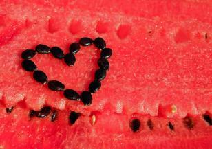 Днес е Световният ден на динята