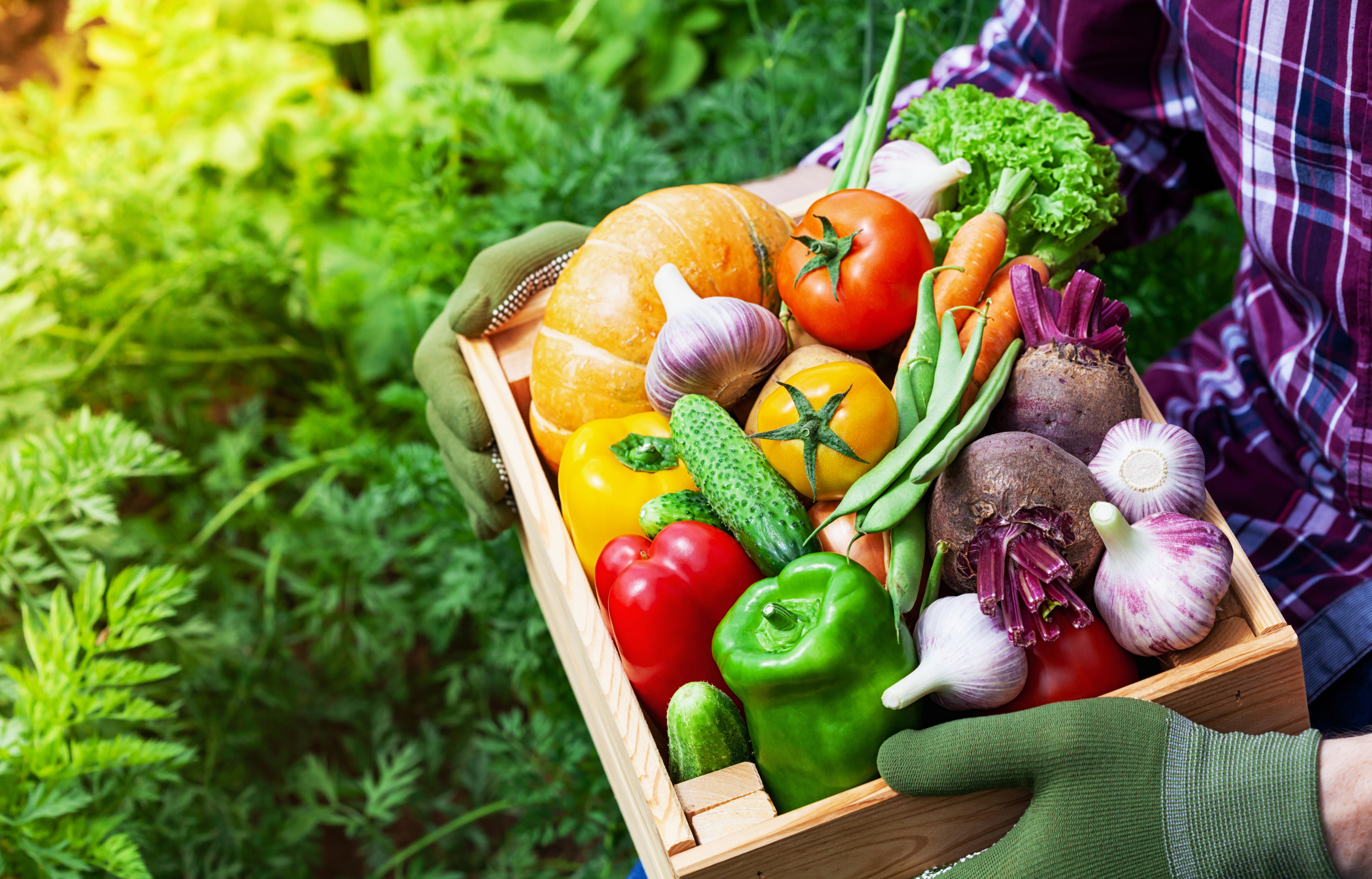 <p><strong>На 30: Атиоксиданти</strong></p>  <p>30-те са годините на появата на първите фини бръчки и бяло в косите. За да забавите процеса на стареене наблегнете на антиоксидантите. Плодовете, цветните зеленчуци и зелените листни зеленчуци са сред най-богатите на антиоксиданти храни.</p>