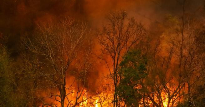 България Обявиха бедствено положение в община Свиленград То е обявено