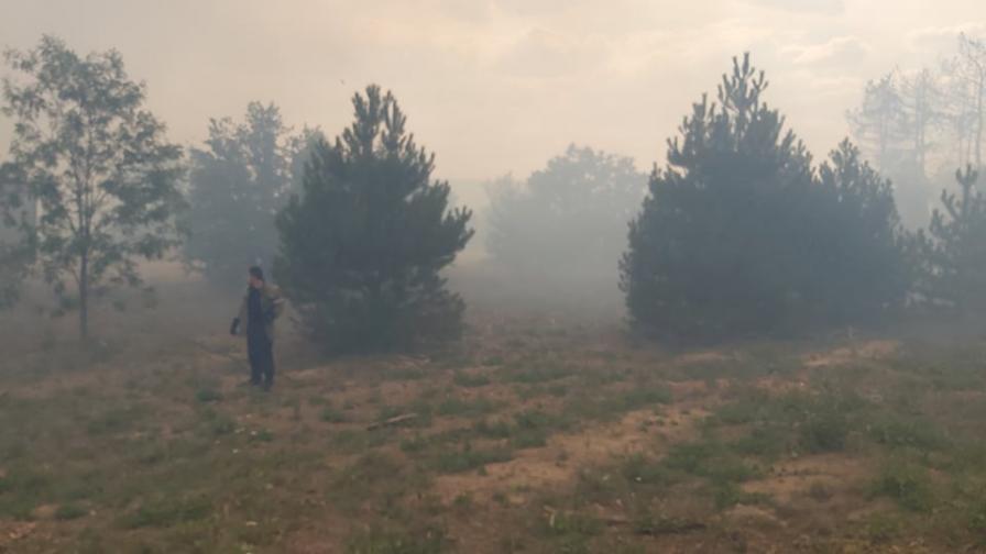 пожари хасковско