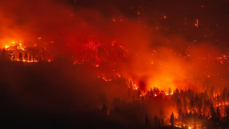 <p>Пожарът се разрасна и навлезе в гора&nbsp;</p>