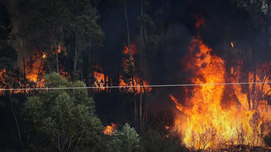 Военнослужещи и техника се борят с пожара над Карлово