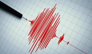 Земетресение в Пловдивско