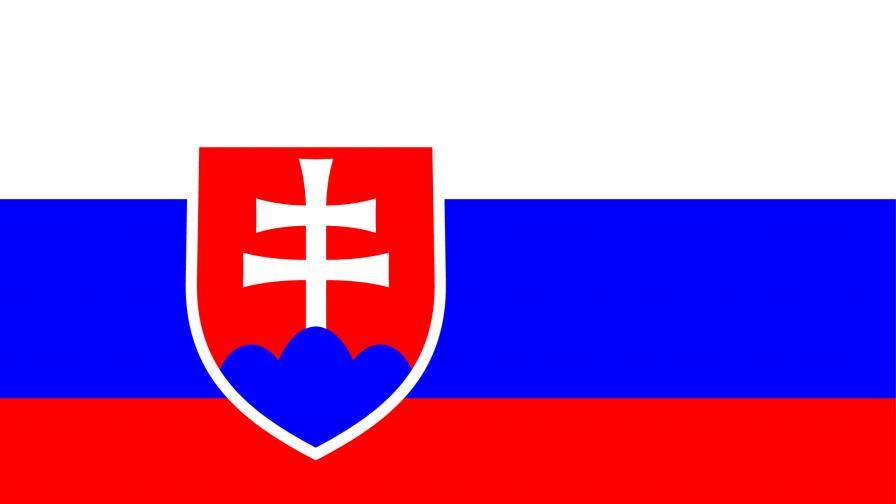 Словакия ще тества за коронавирус всички граждани над 10 години