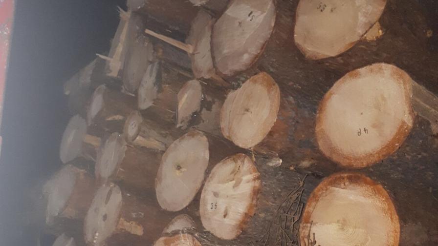 След гонка: Лесничеи задържаха камион с незаконна дървесина