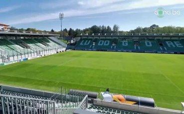 """""""Хювефарма Арена"""" е напълно готов за Лудогорец - Антверп"""