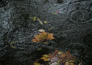 Значителна облачност и валежи в четвъртък