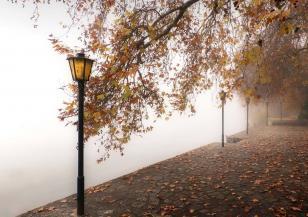 Значителна облачност и мъгли до края на седмицата