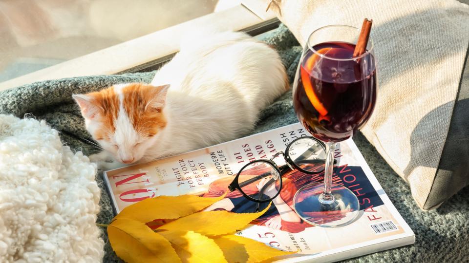 котка есен вино