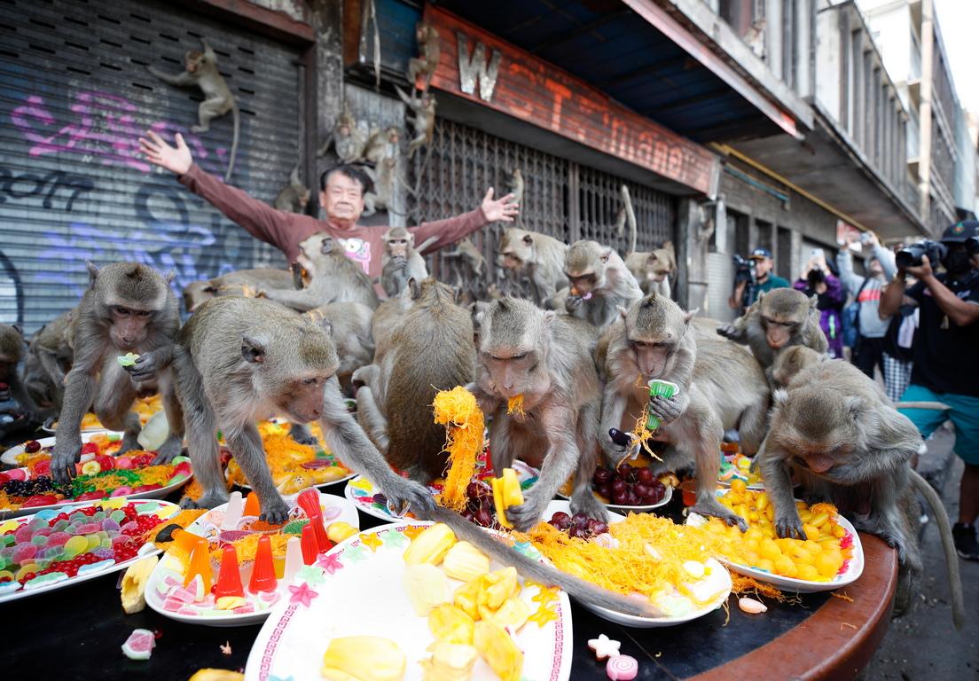 <p>Тук се провежда ежегодния фестивал на &quot;Маймунският банкет&quot; Веднъж годишно на вечеря се канят 600 макака - на маса и ги очакват 2 тона храна.</p>