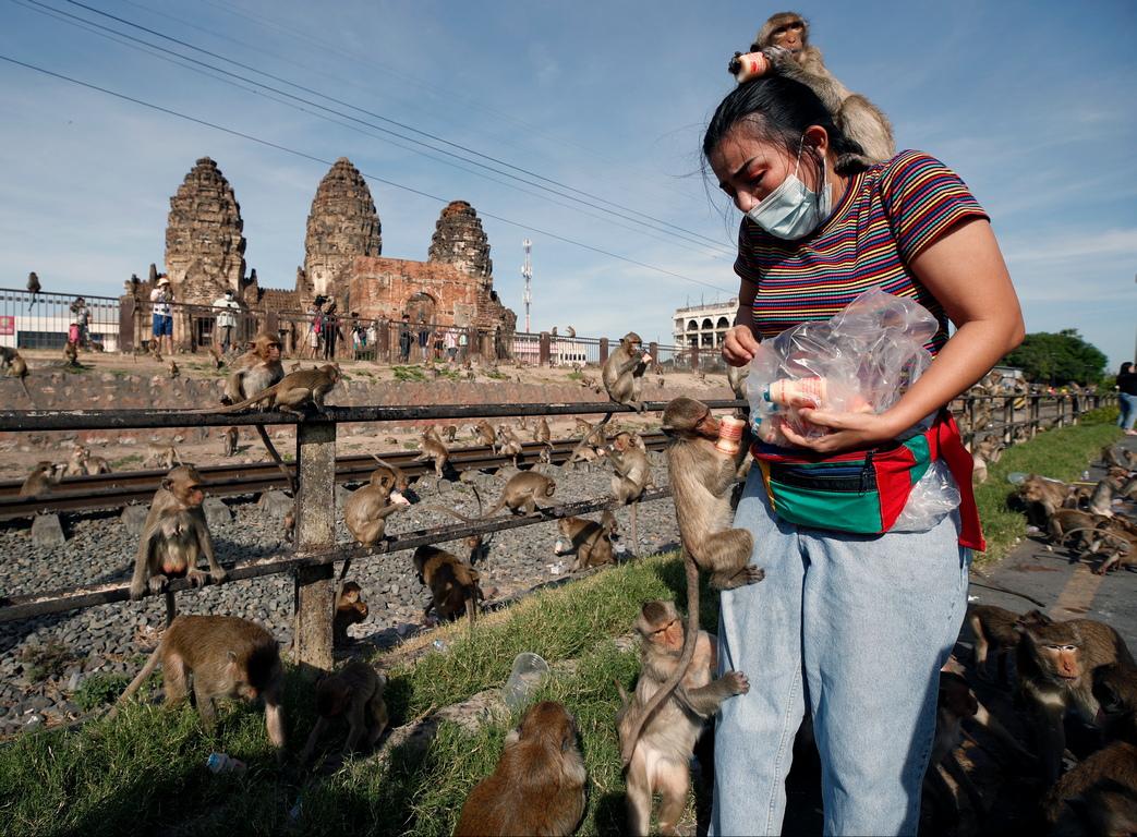 <p>Лопбури, град на 150 км северно от Банкок, е добре известен като град на маймуните, тъй като древния храм Phra Prang Sam Yod е завладян от маймуни.</p>  <p>&nbsp;</p>