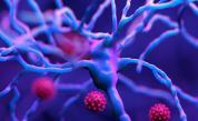 Какво трябва да знаем за индийския вариант на коронавируса