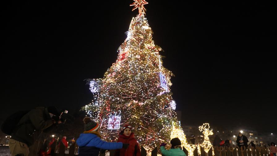 Коледната елха в София грейна без празнична...