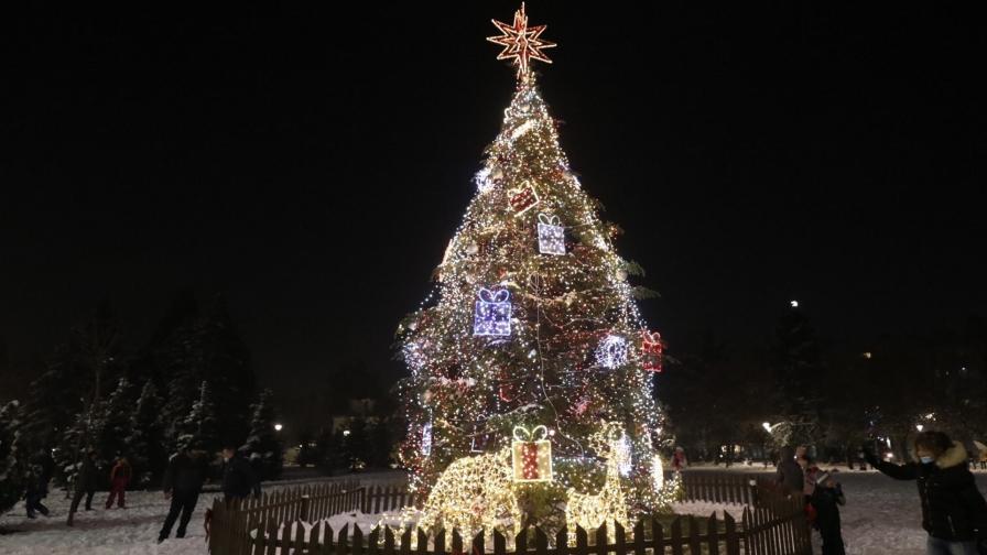<p>Коледната елха в София грейна</p>